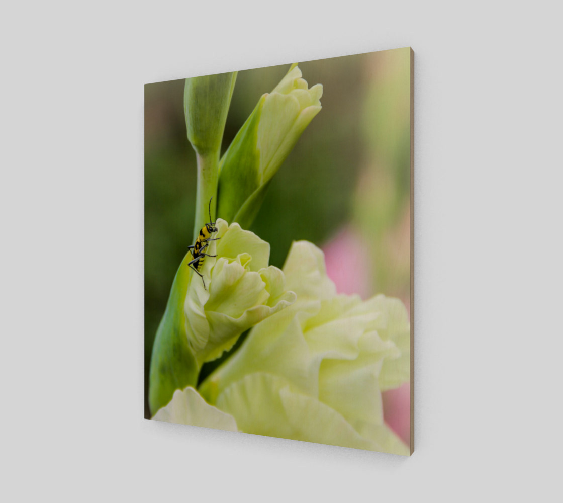 Bee on a gladiola flower preview #2
