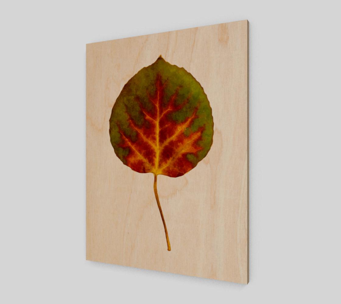 Aspen Leaf preview #1