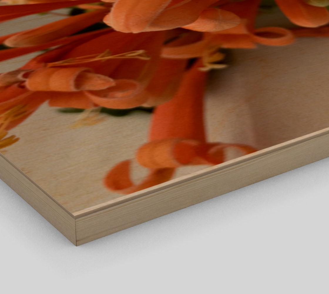 Aperçu de YMCA Orange Flower/Flor #3