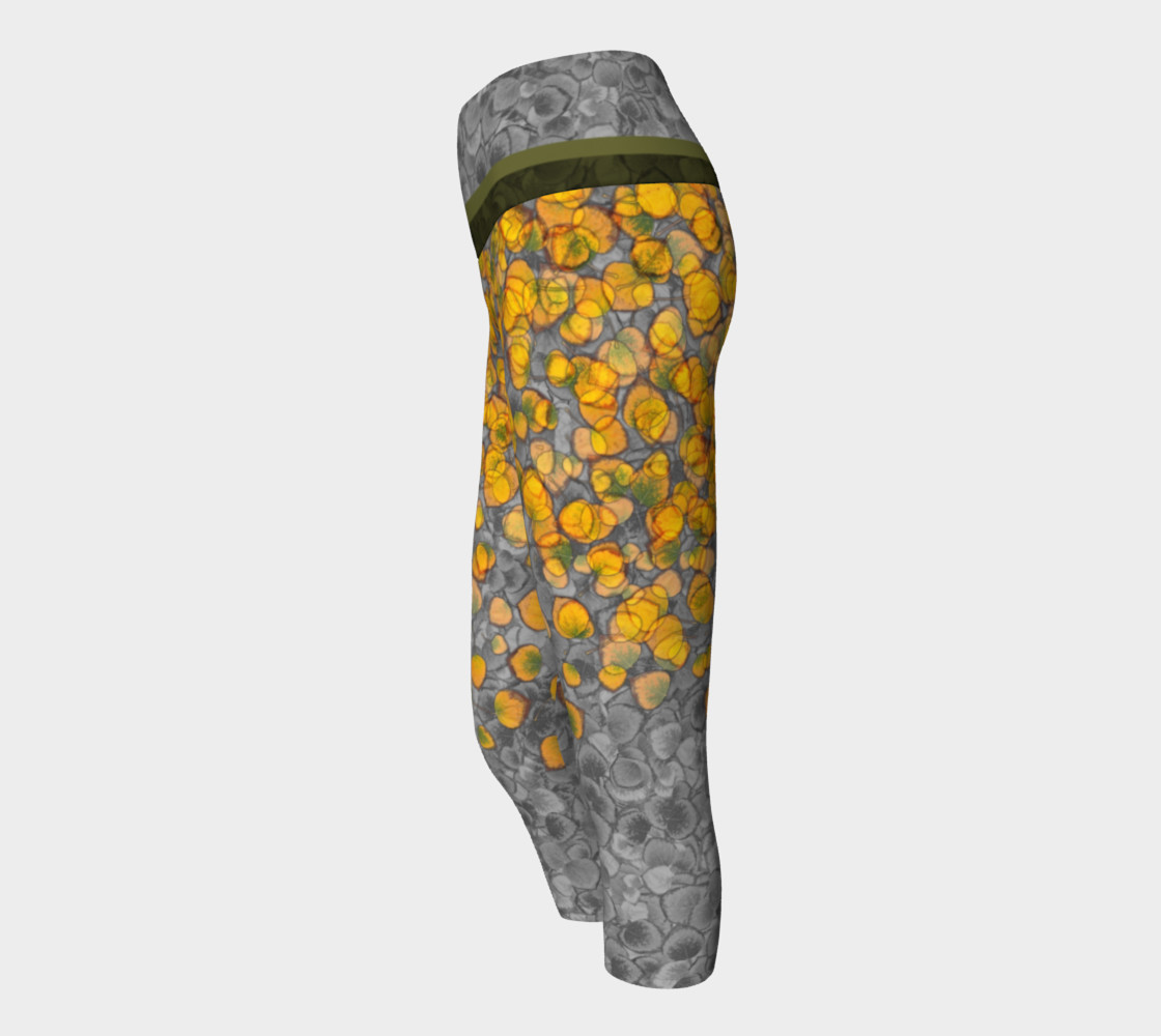 Aspen Leaves Capris 2 preview #2