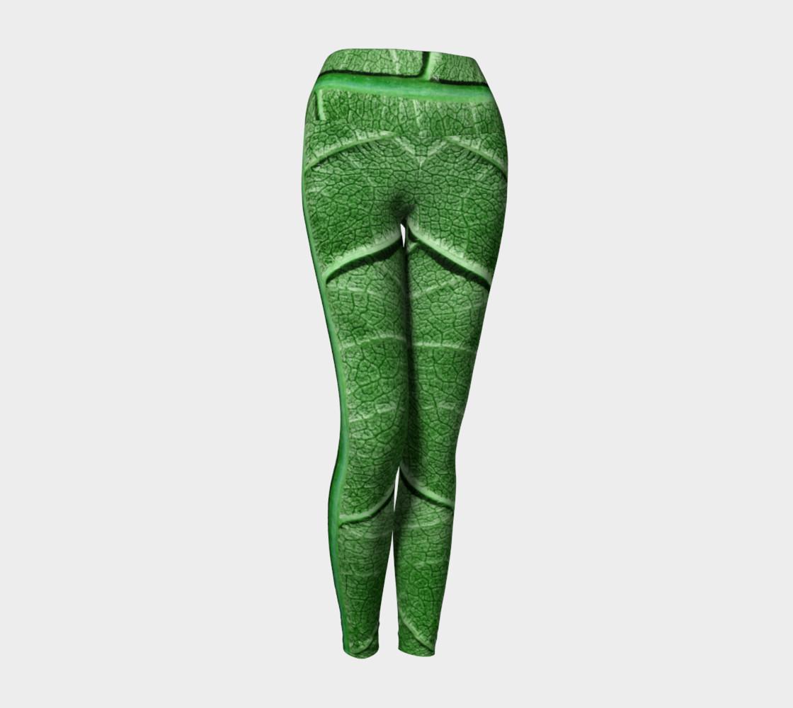 Aperçu de Veined Green Leaf #1