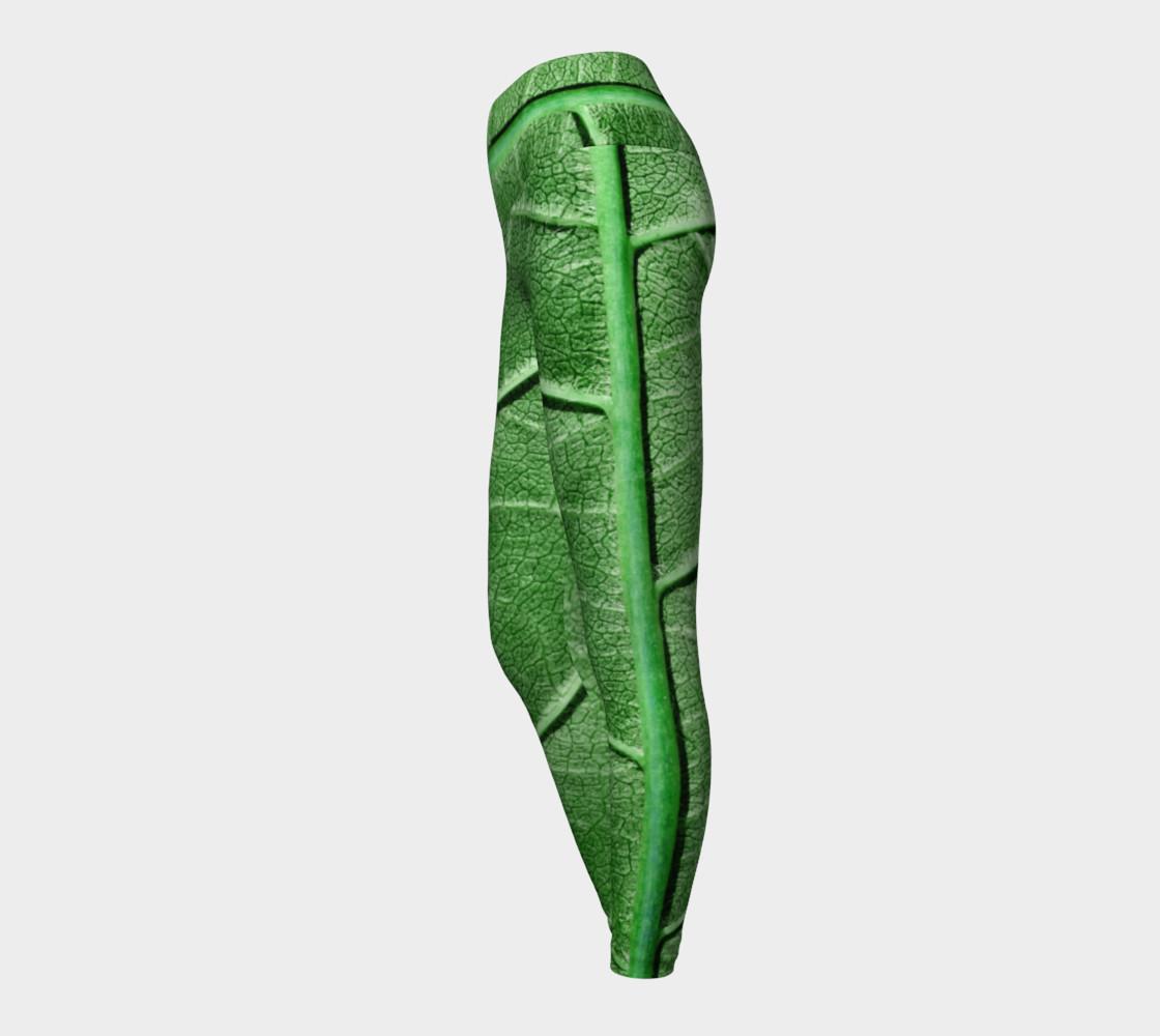 Aperçu de Veined Green Leaf #3