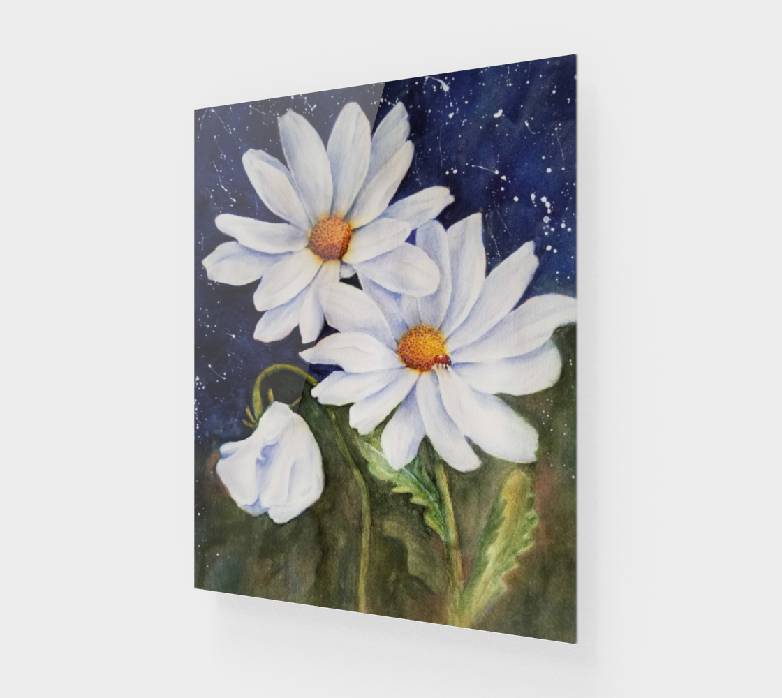 Fabulous White Daisies preview