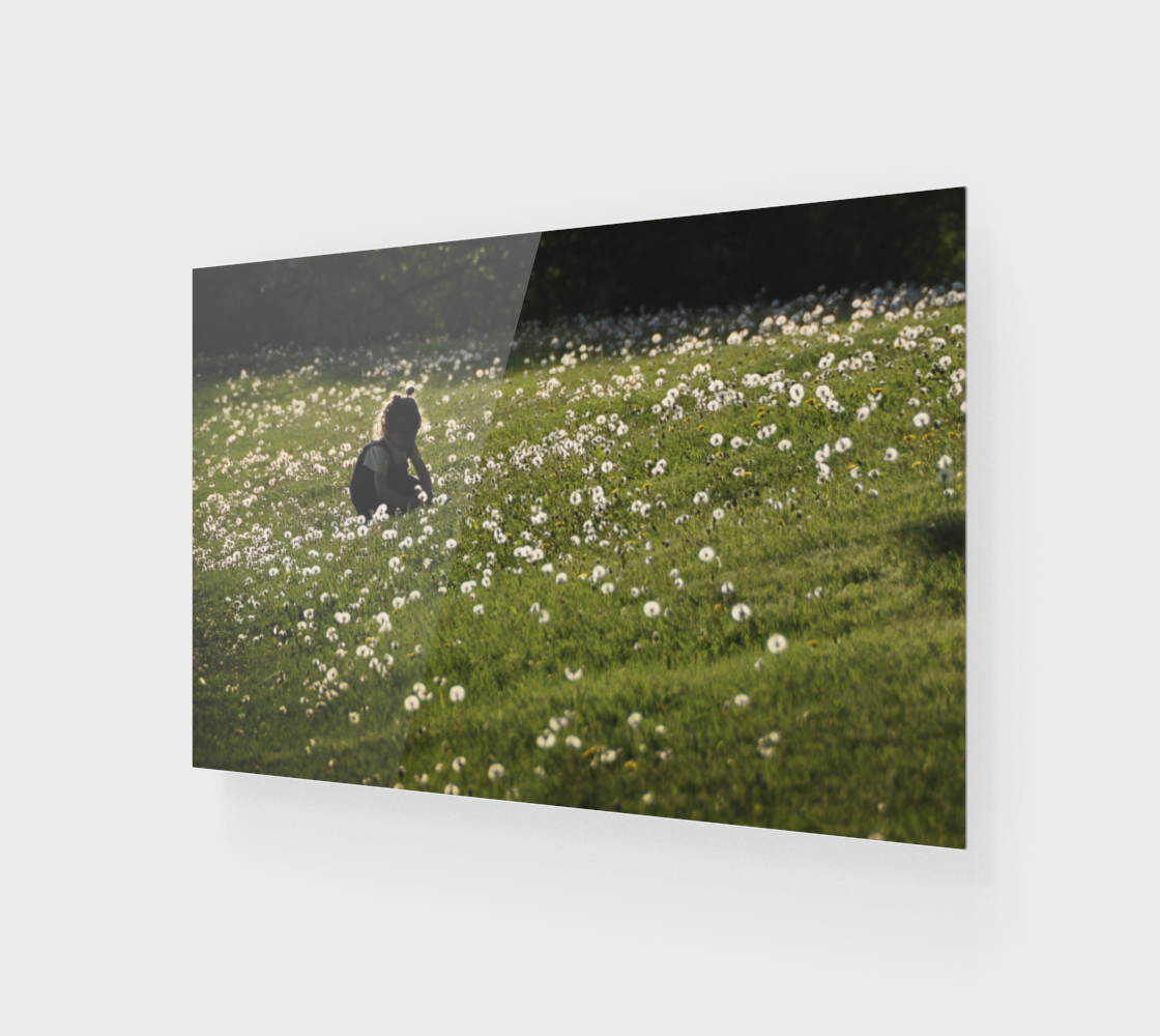 Enfant dans les pissenlits - fleurs preview