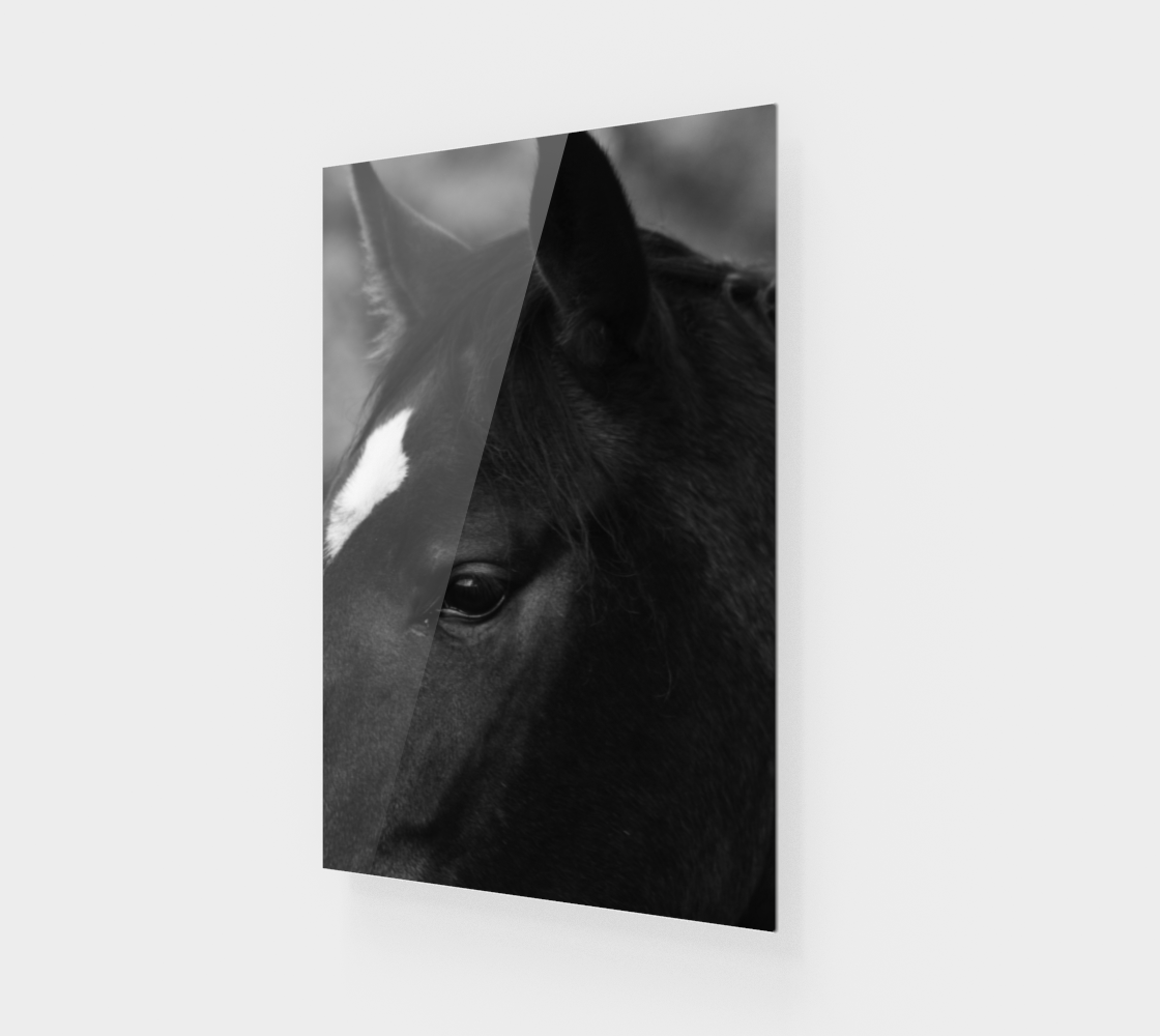 Horse Wood Print preview