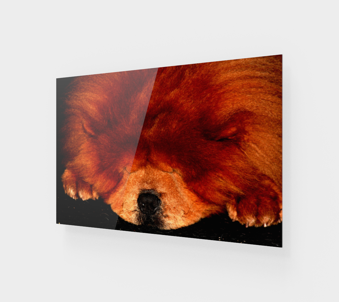 Sleeping Chow Chow Wood Print preview