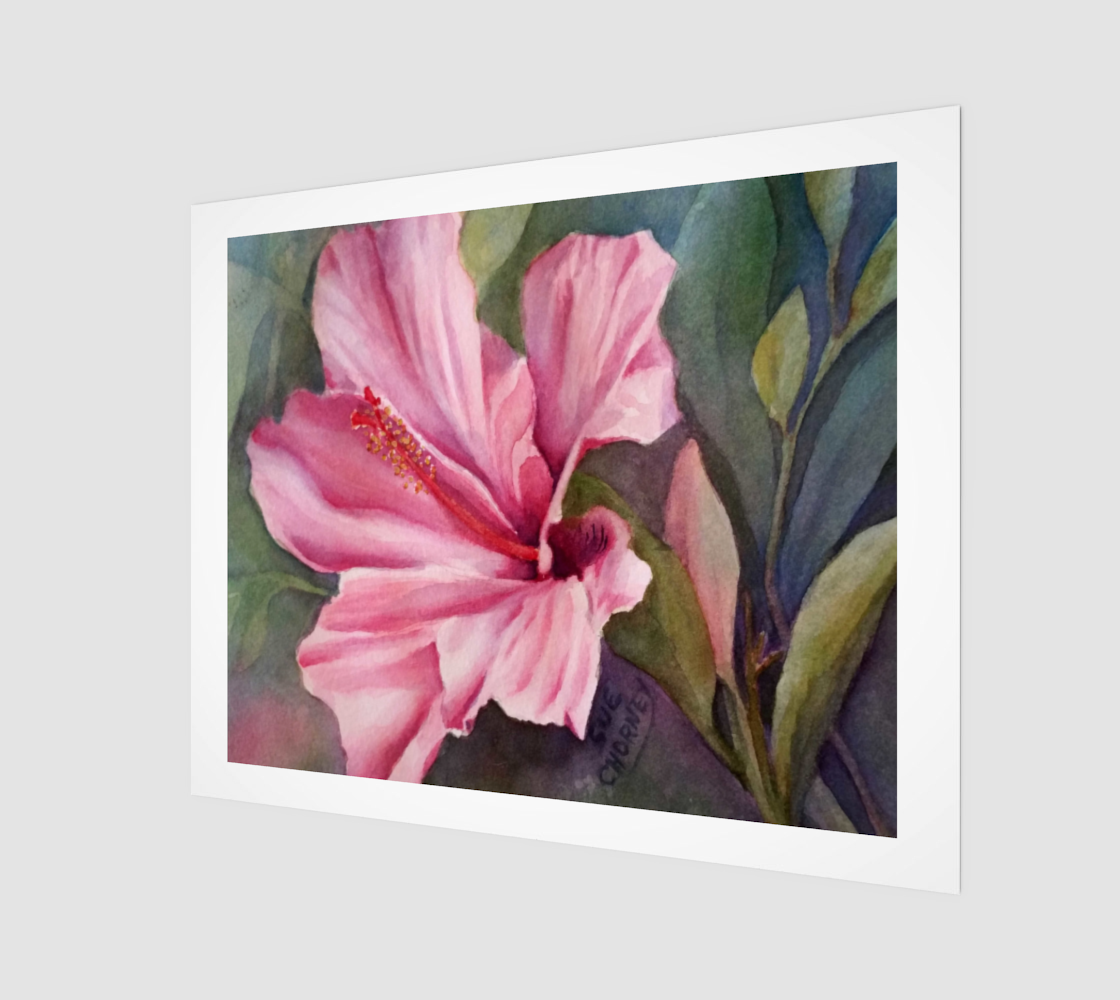 Hot Pink Hibiscus preview