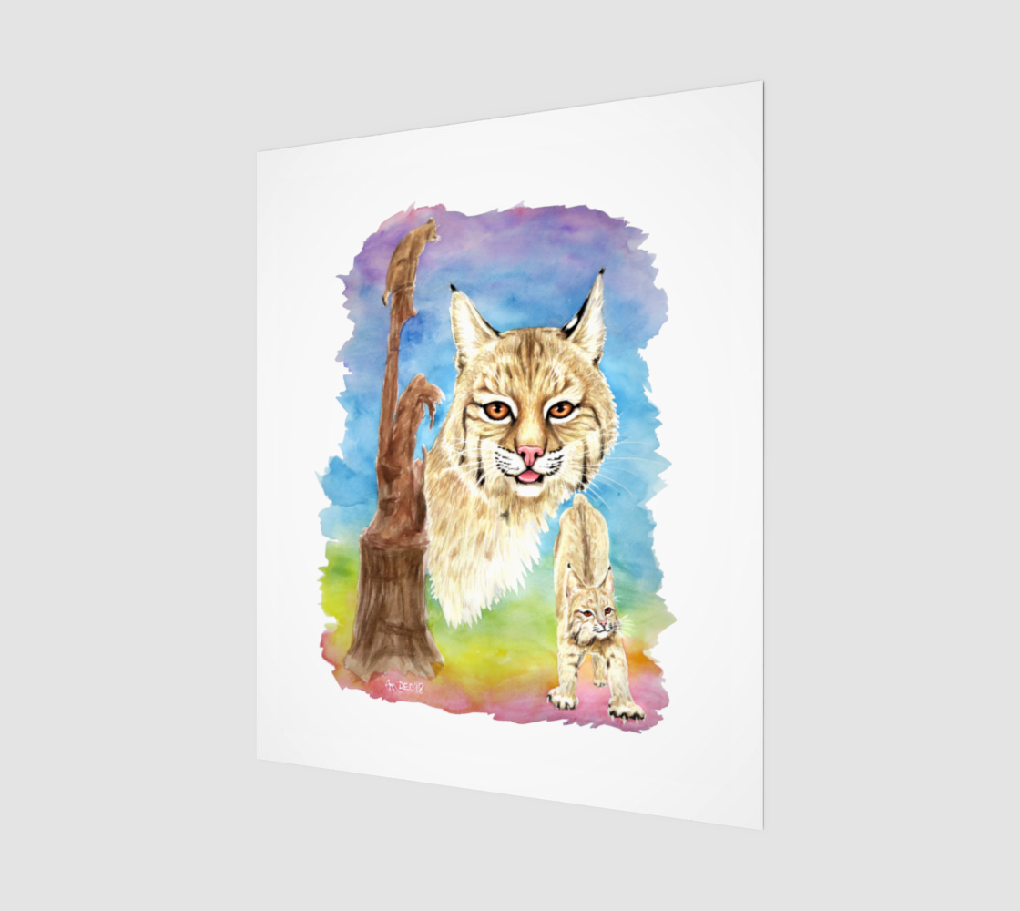 Smalls Bobcat 20x24 preview