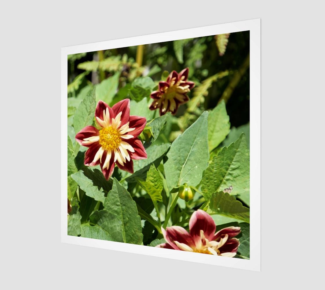 Fireburst Flower aperçu