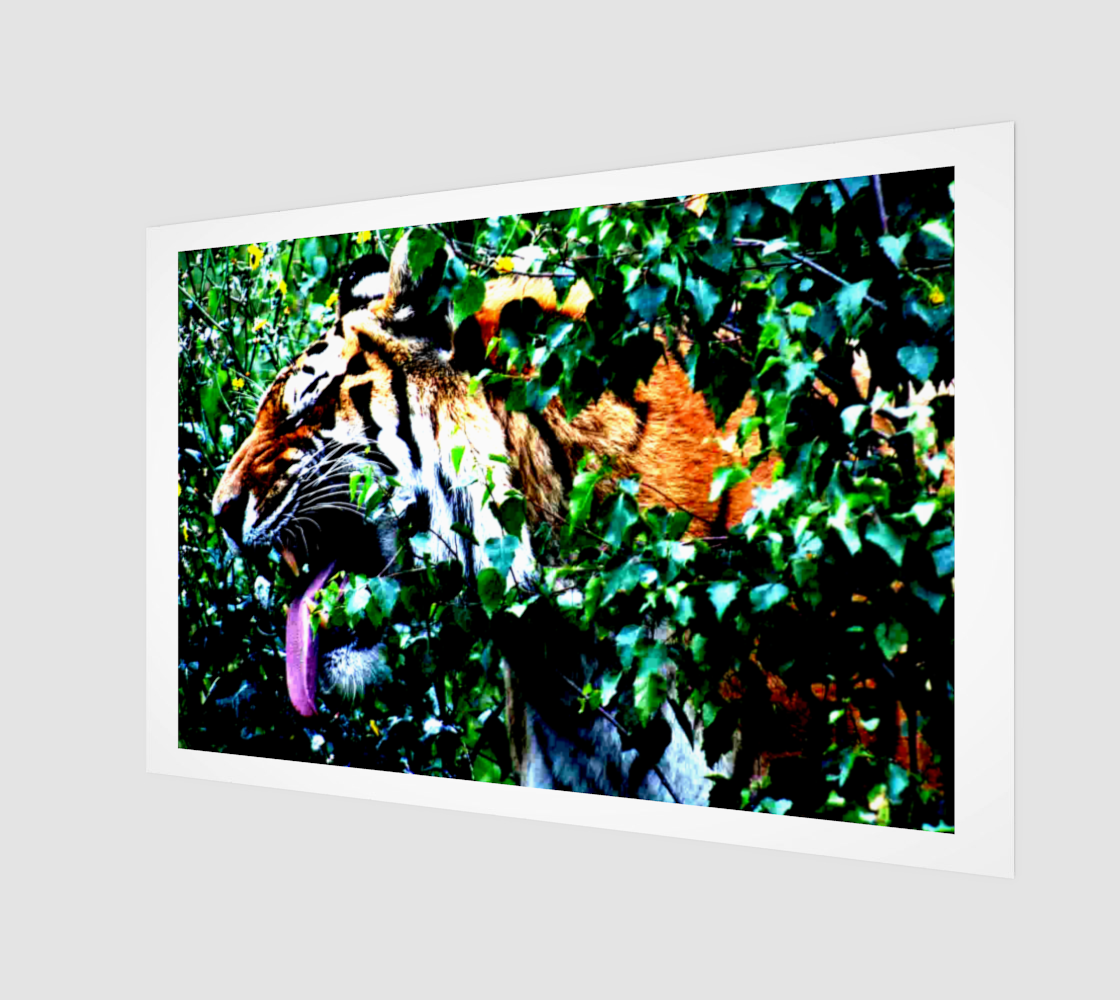 Amur Tiger Poster Print preview