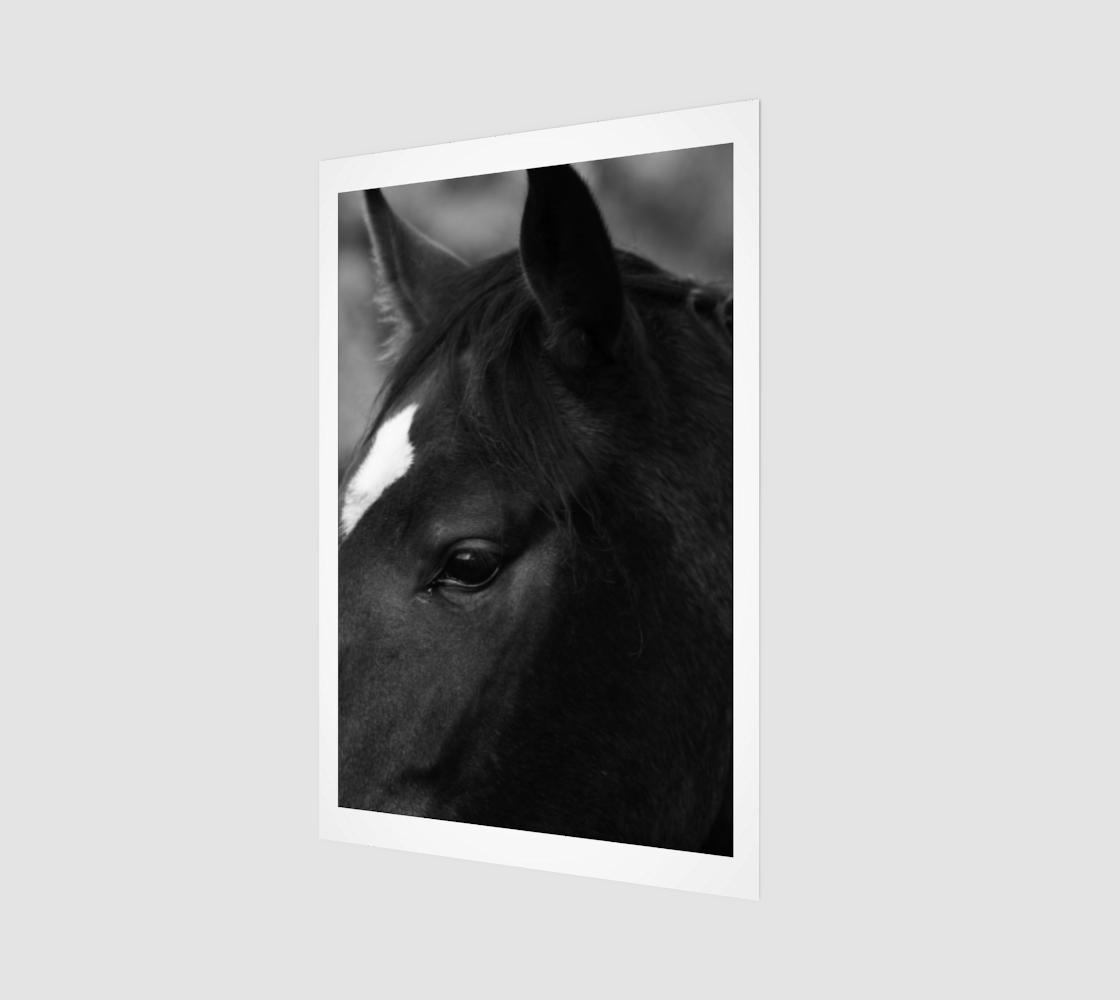 Horse Art Print preview