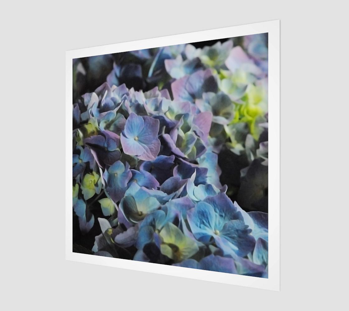 Aperçu de Hydrangeas Art Print