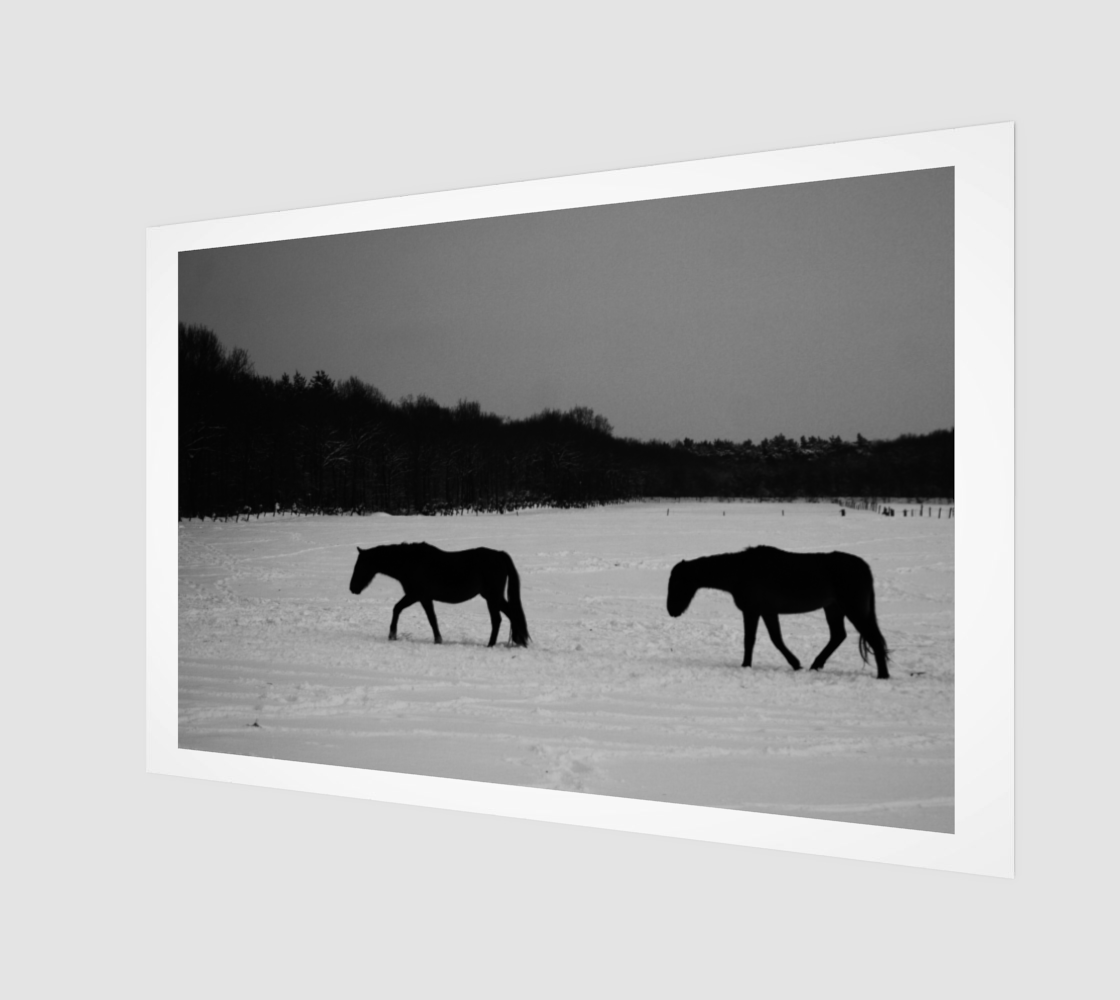 Horses On Snow Poster Print preview