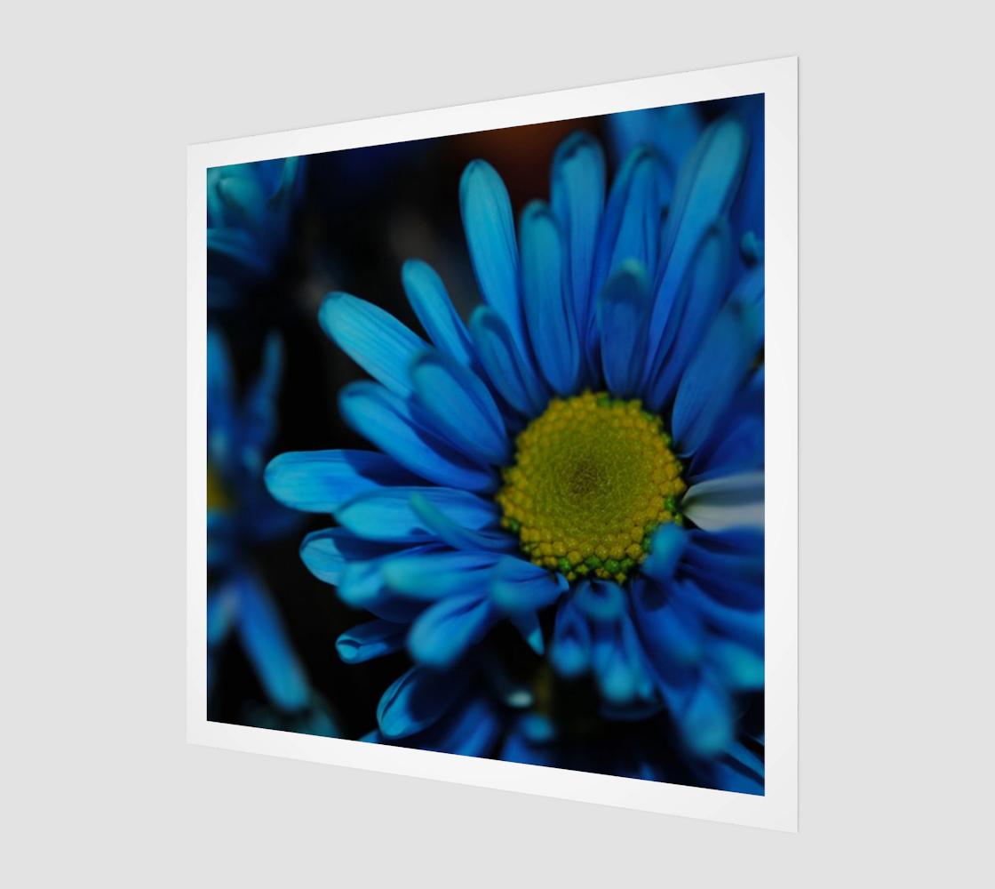 Aperçu de Blue Daisy Art Print