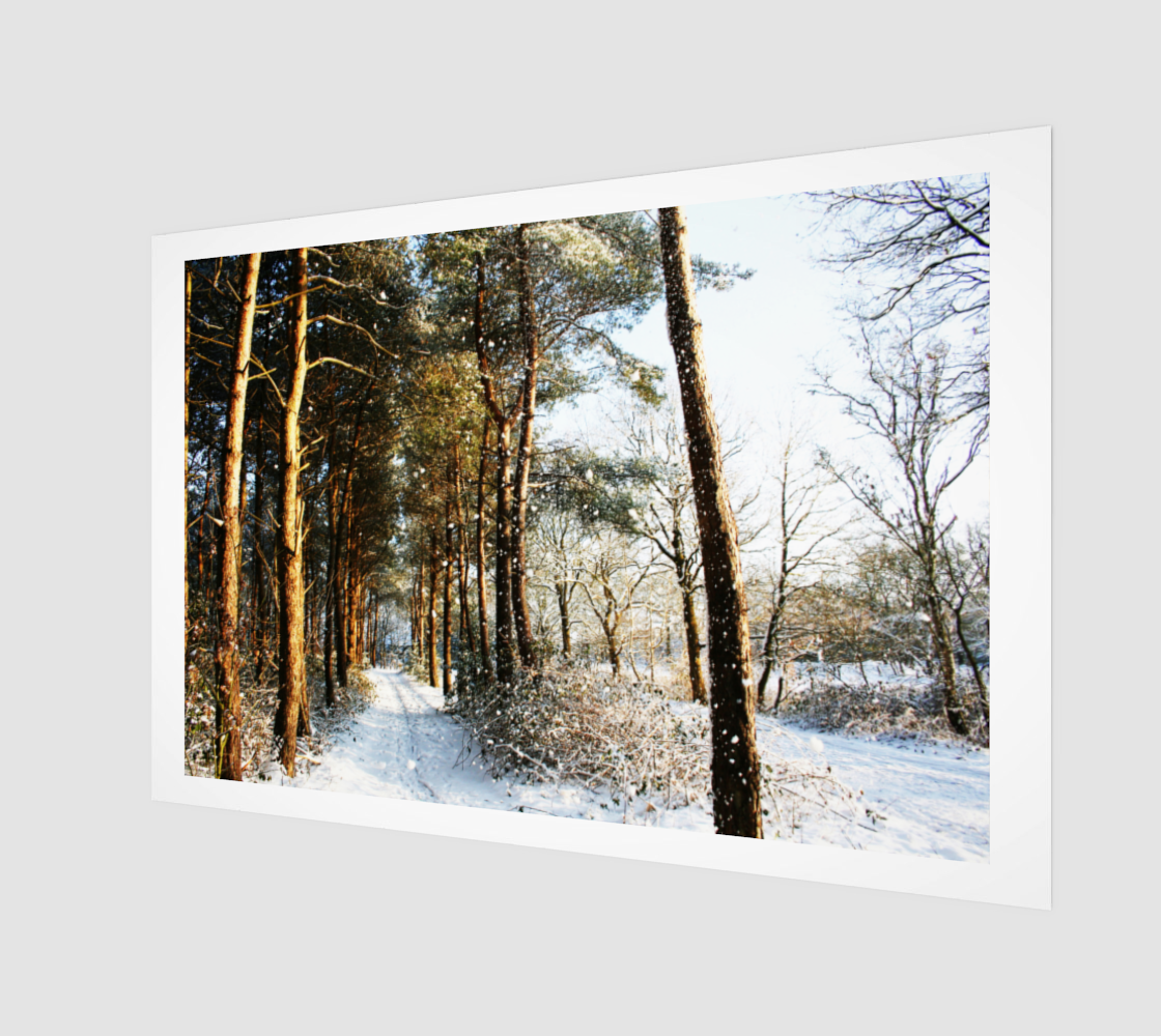 Forest Snow Scene Wood Print preview