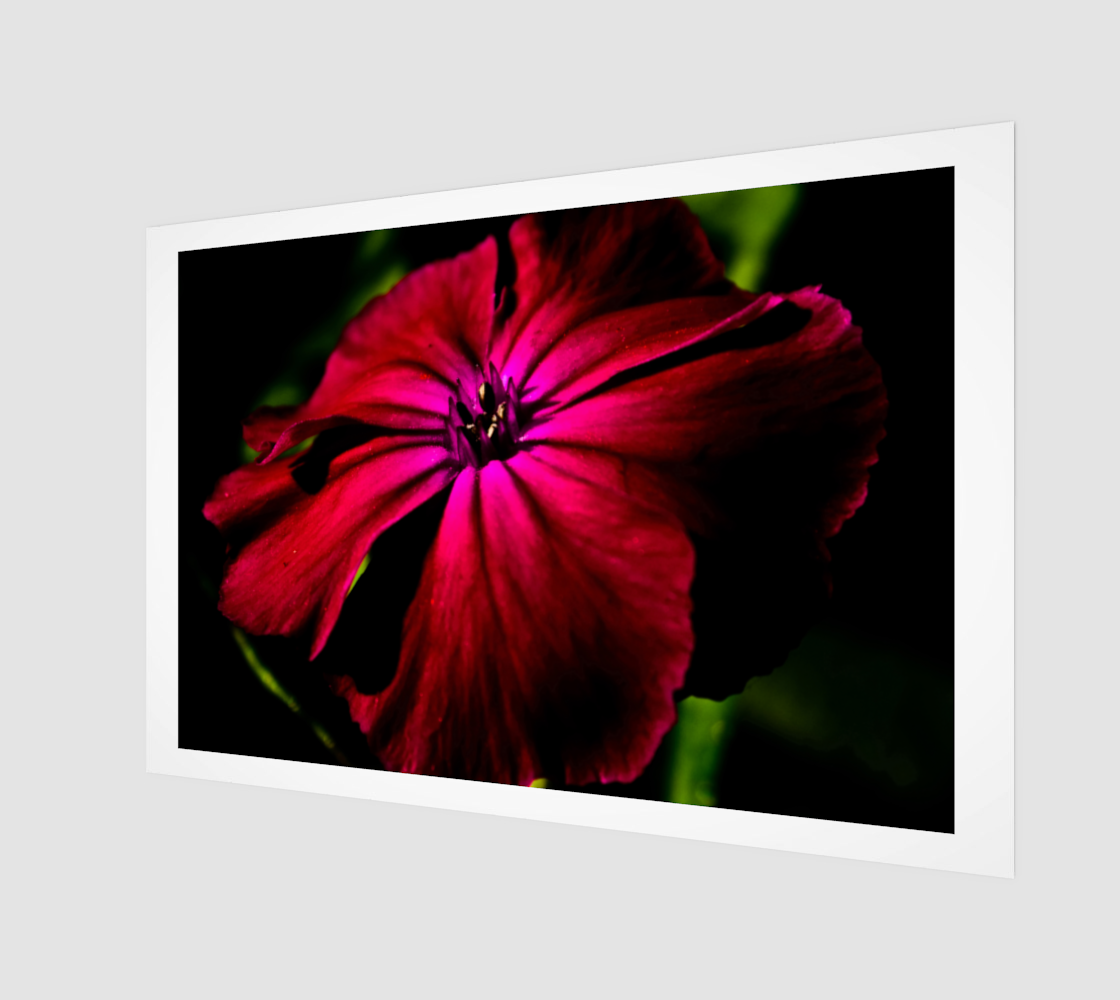 Purple Wild Flower Wood Print 3D preview