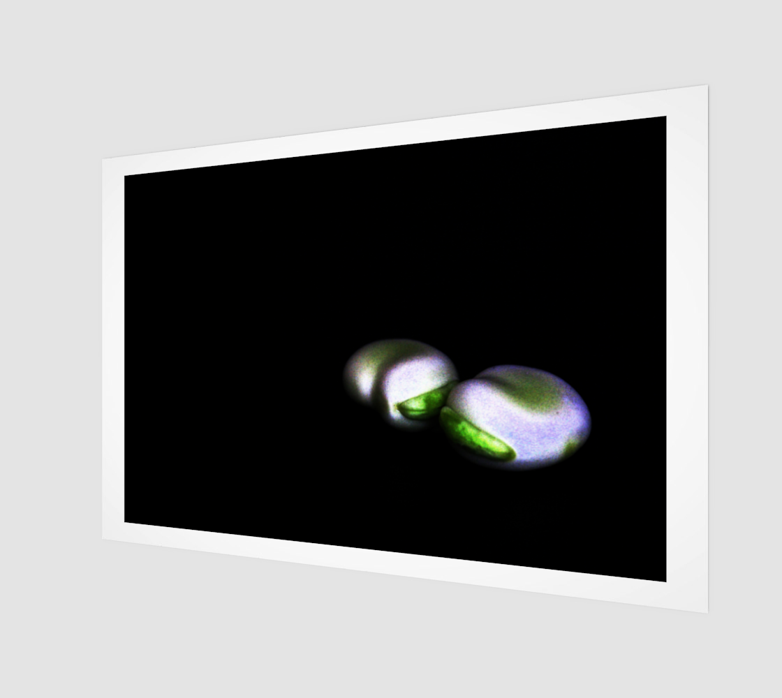 Two Broad Beans Poster Print 3D preview