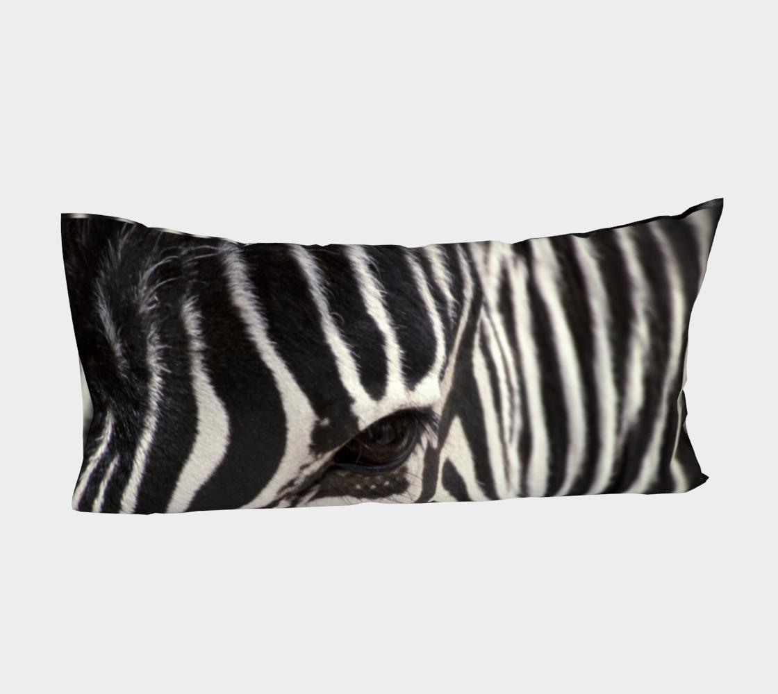 Aperçu de Zebra Eye #4