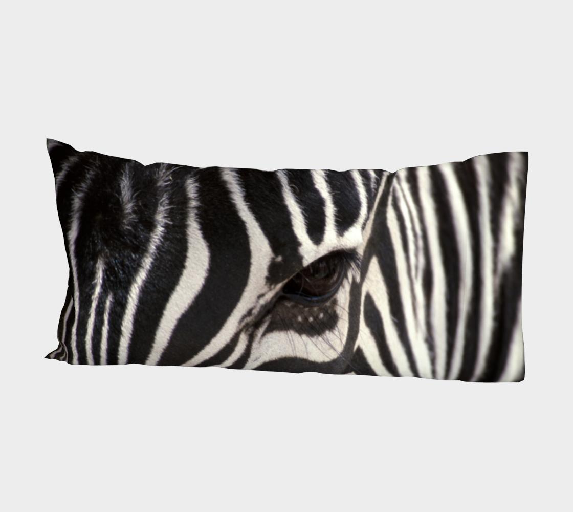 Aperçu de Zebra Eye #2