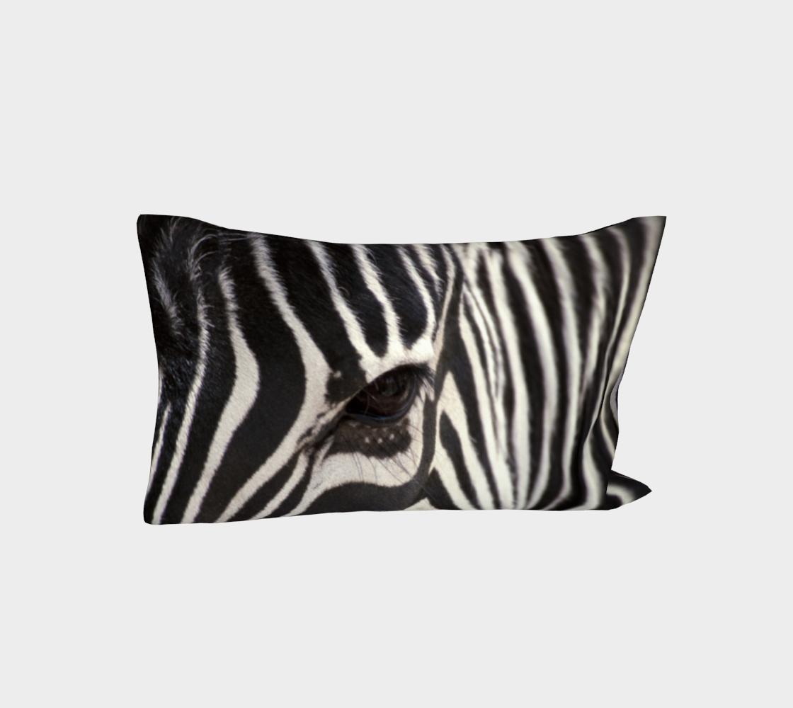 Aperçu de Zebra Eye #3