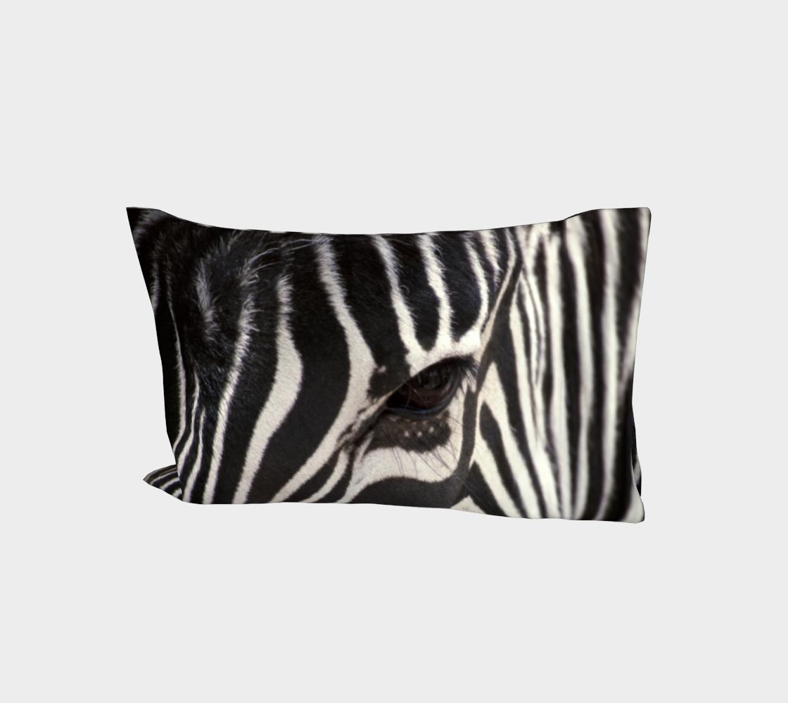 Aperçu de Zebra Eye #1