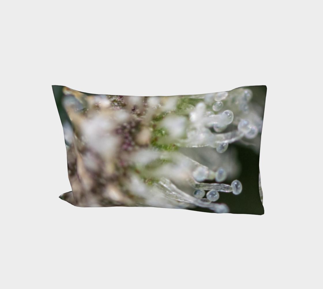 Trichomes & Terpenes Bed Pillow Sleeve aperçu