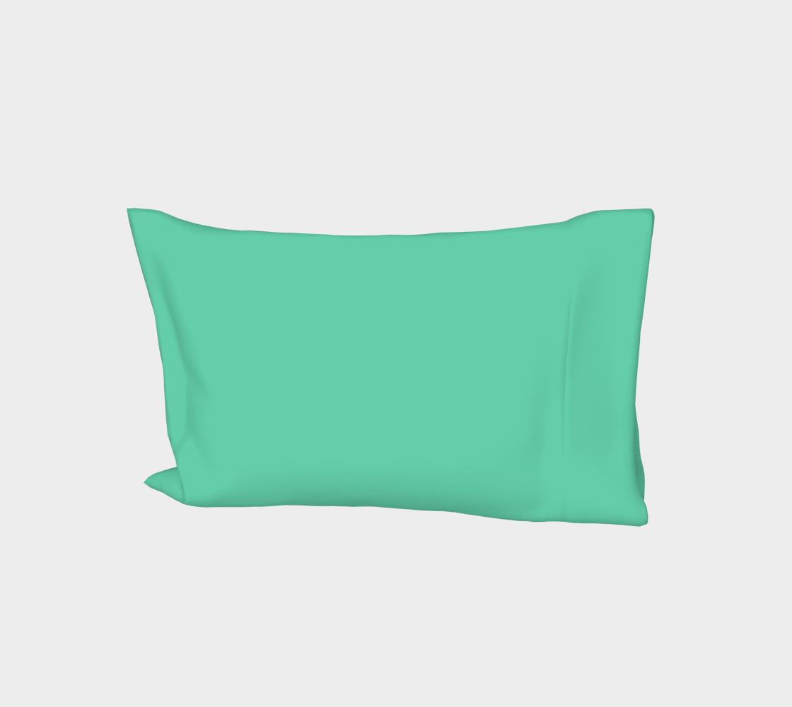 color medium aquamarine  aperçu