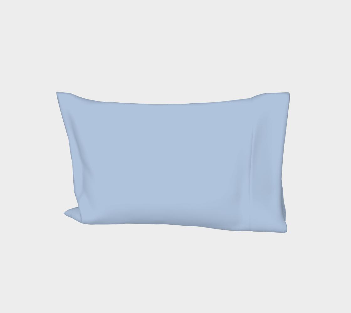 color light steel blue aperçu