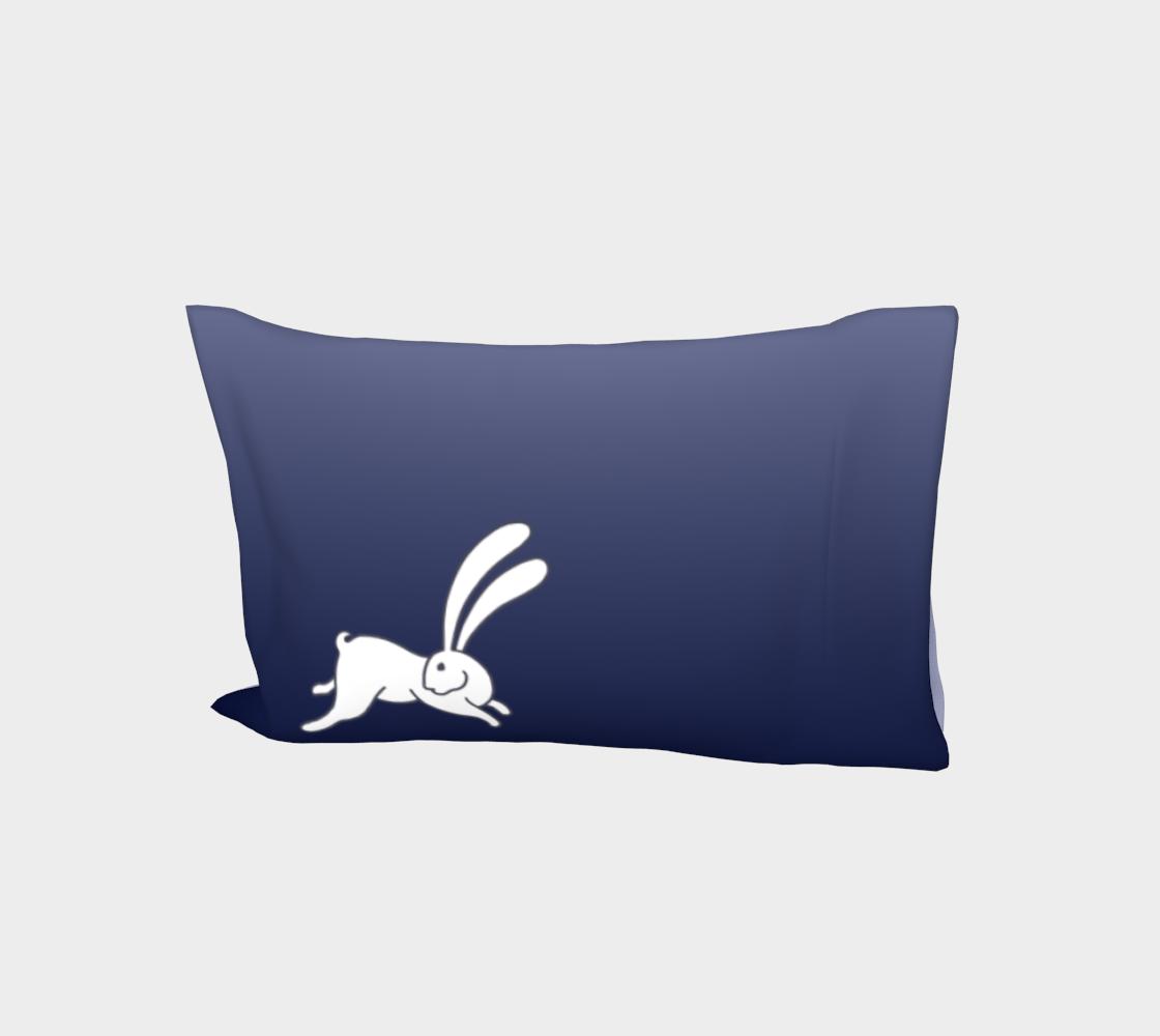 Bunny 3 L, ombré  aperçu