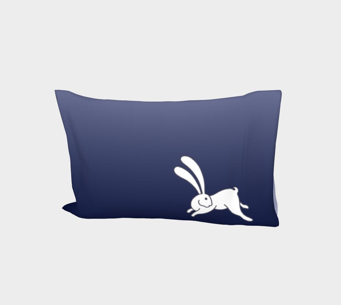 Bunny 3 R, ombré  aperçu