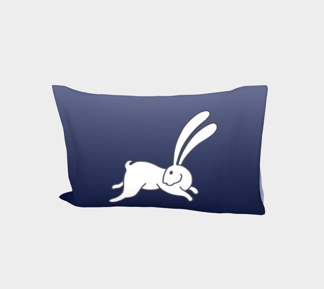 Bunny 3 CL, ombré  aperçu