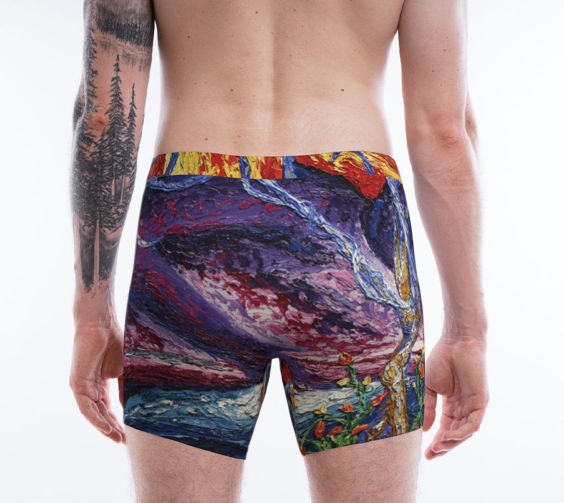 Elysia Mens Brief preview #2