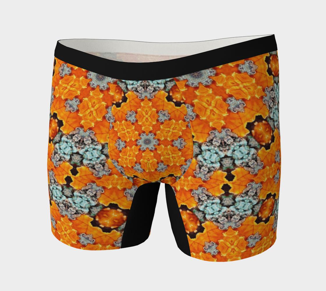 Aperçu de Kaleidoscope Orange Artistic Boxer Briefs