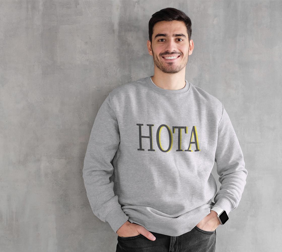HOTA 3 preview