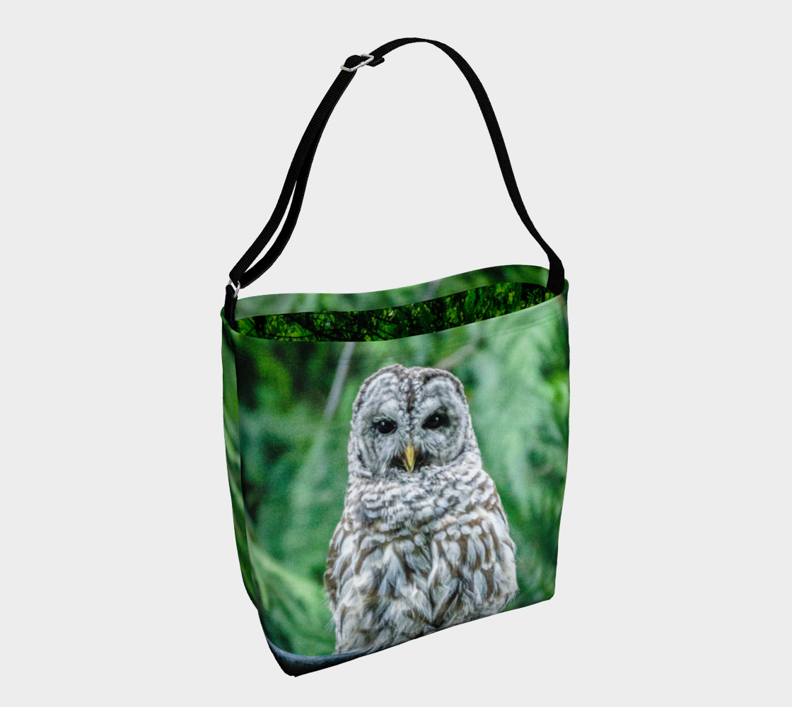 Good Evening Owl preview
