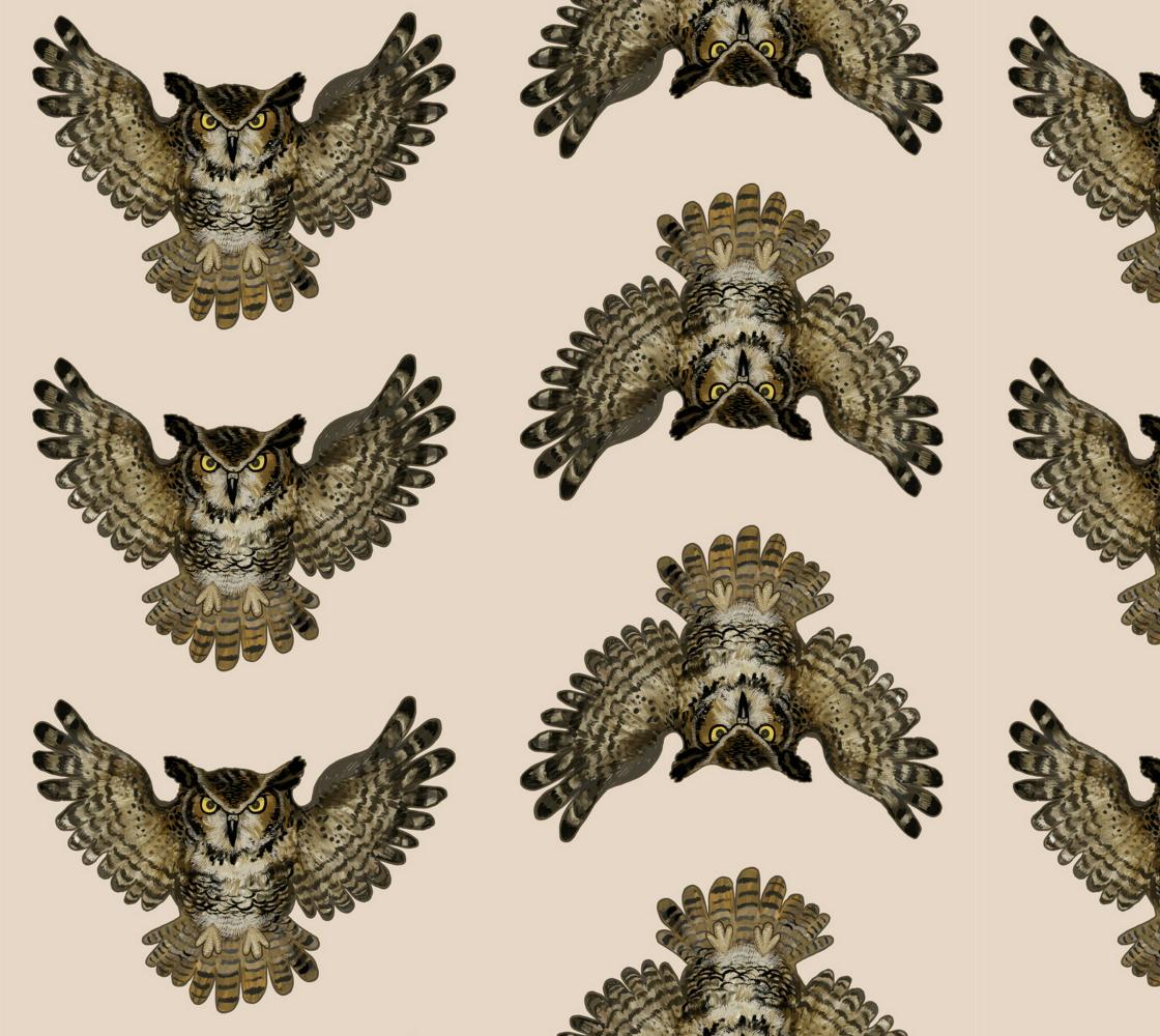 Aperçu de owls