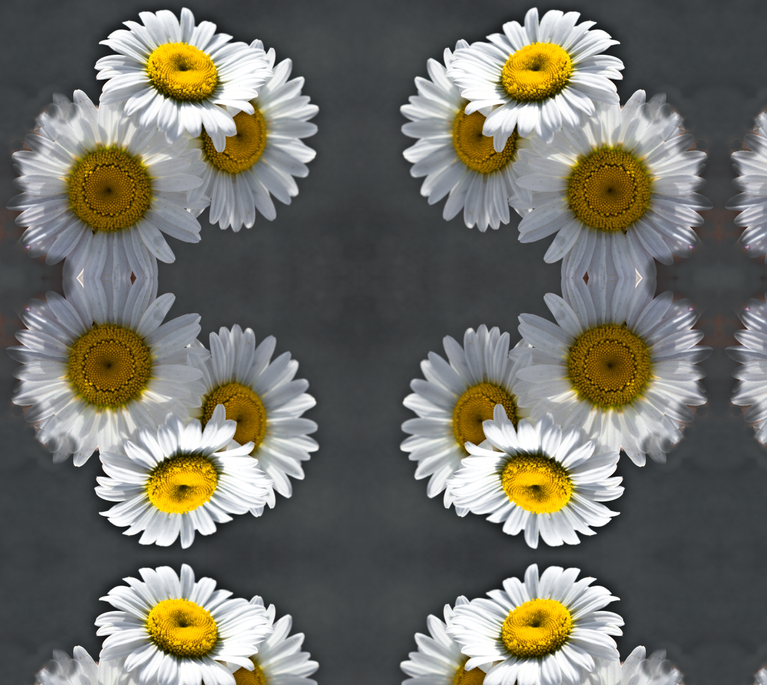 Triple Daisy preview
