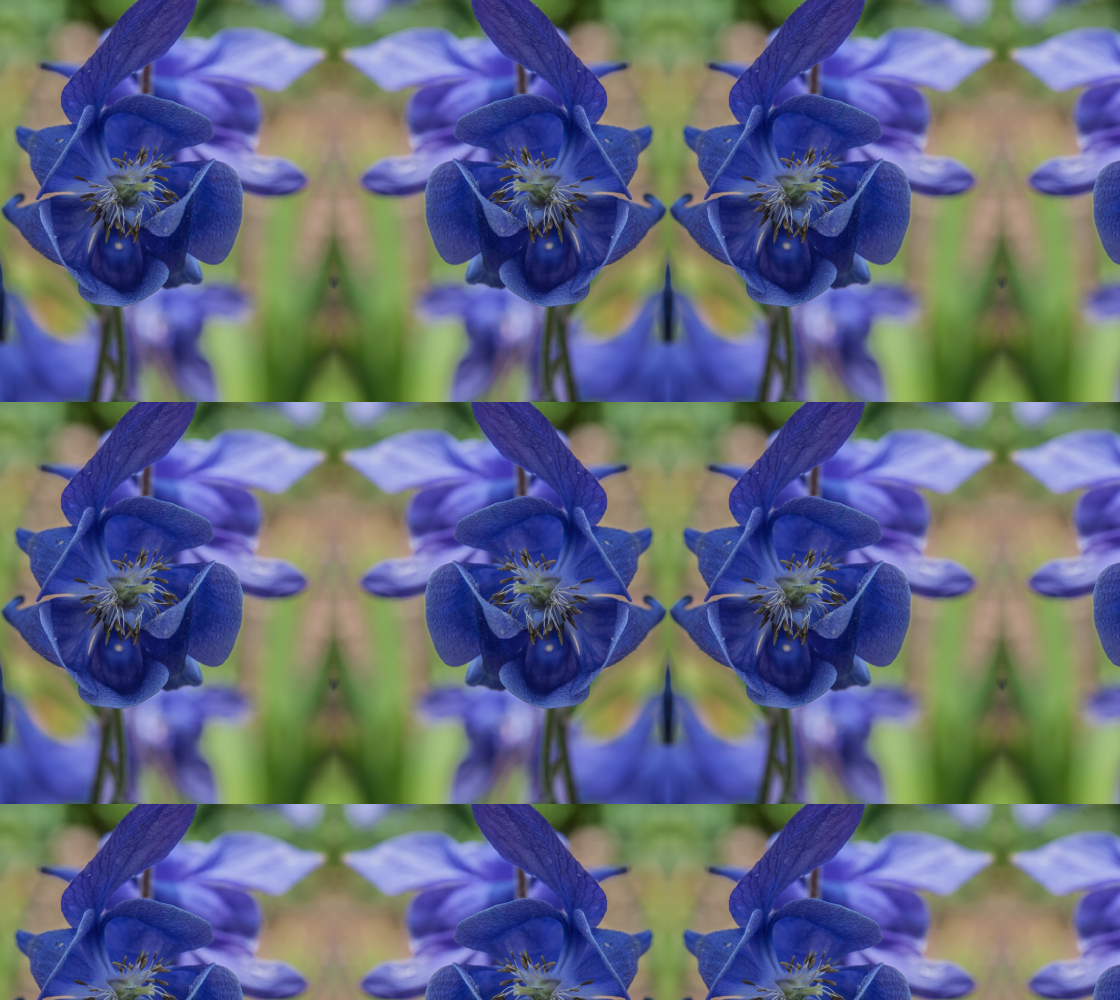 Blue Flower preview