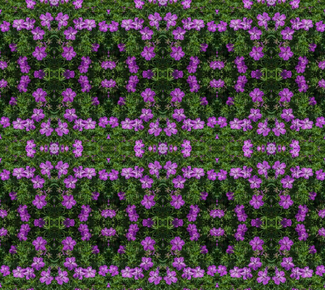 Aperçu de Purple Flowers