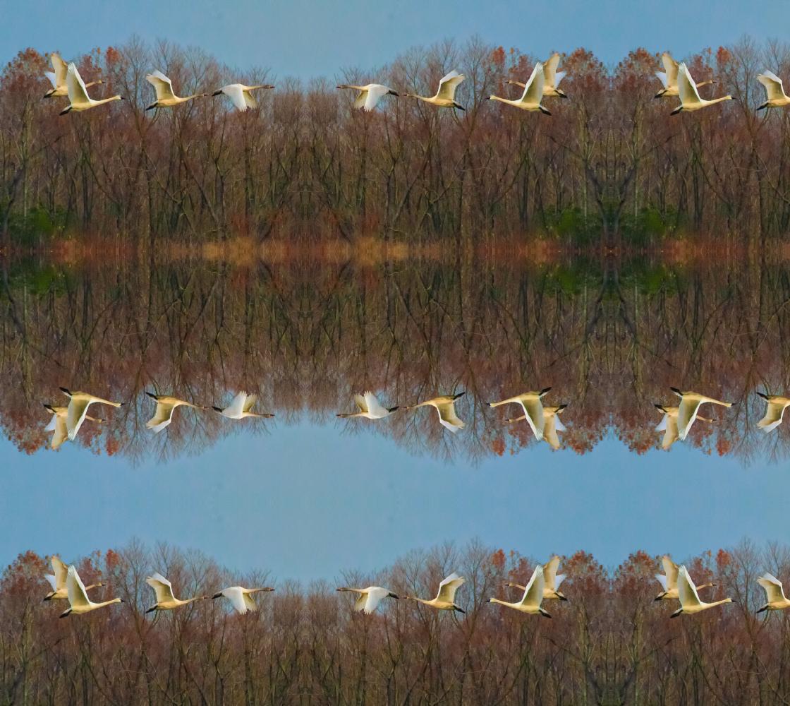 Aperçu de Snow Geese in Flight