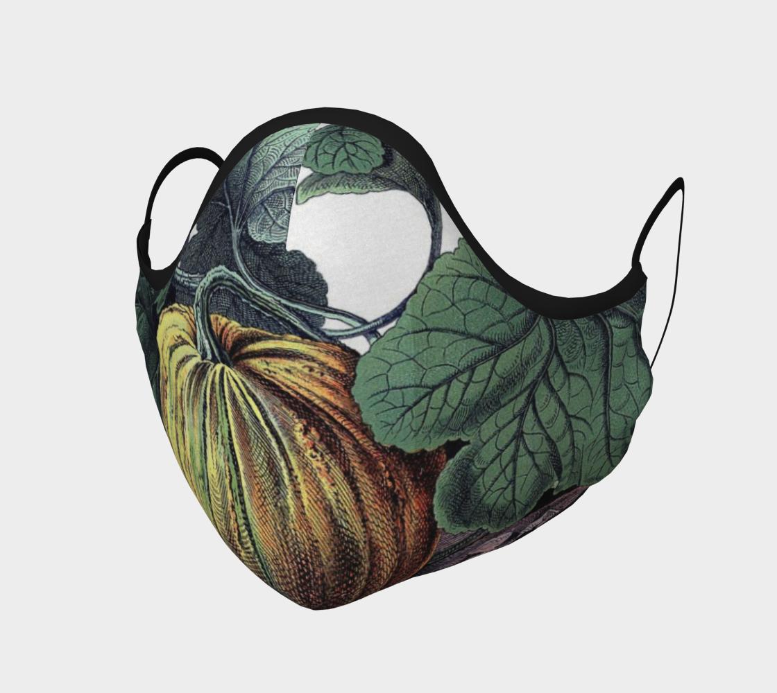 Aperçu de pumpkin mask #1