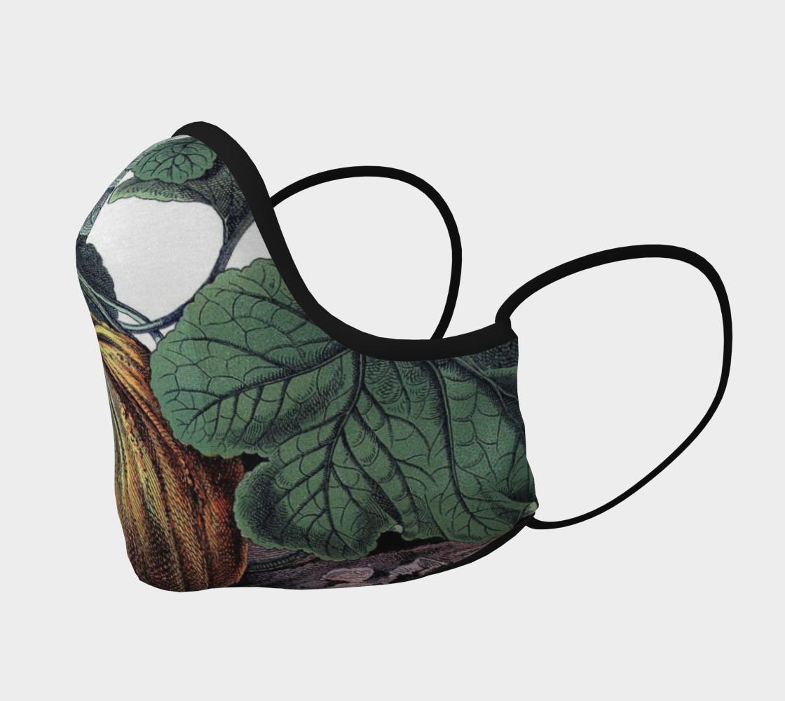 Aperçu de pumpkin mask #2