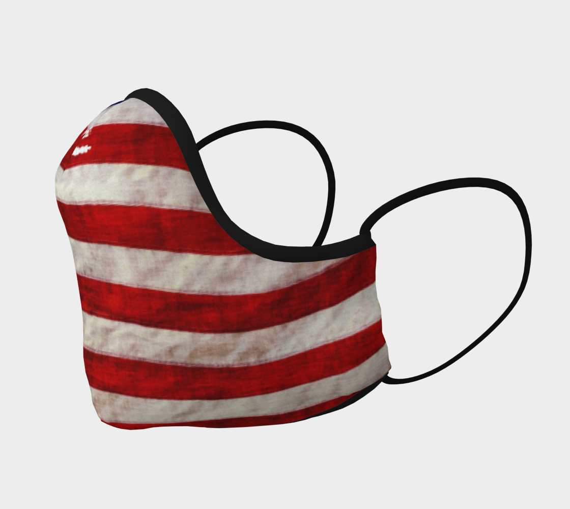 Patriotic US Flag preview #2