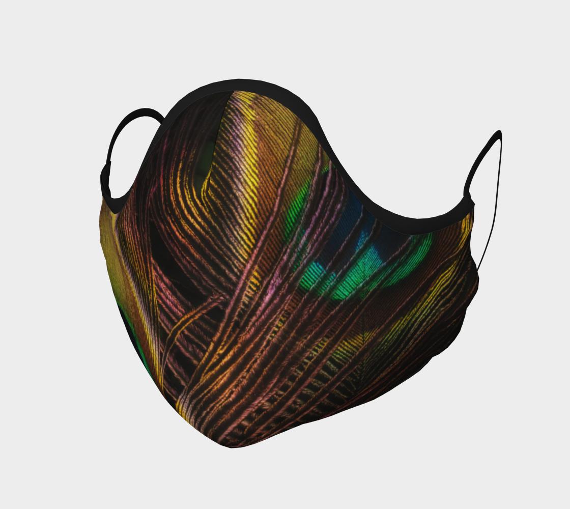 Aperçu de Plumes de paon  |  Peocock Feathers