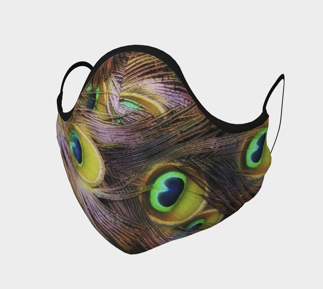 Plumes de paon  |  Peocock Feathers aperçu