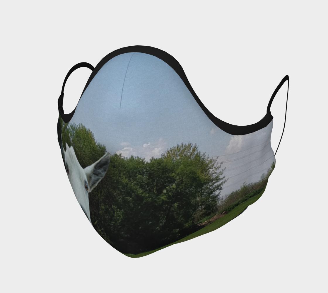 Face Mask - Morden's Organic Farm Store preview