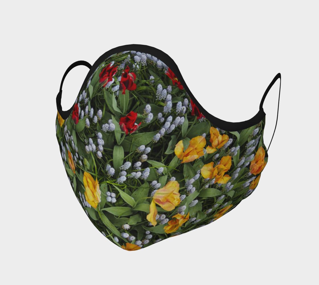 Aperçu de Tulipes  |  Tulips