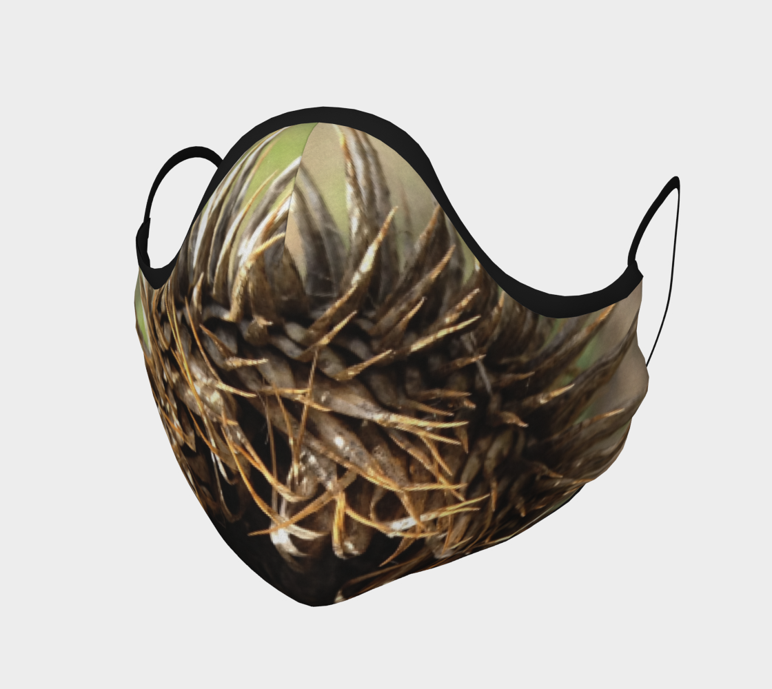 Nest preview #1