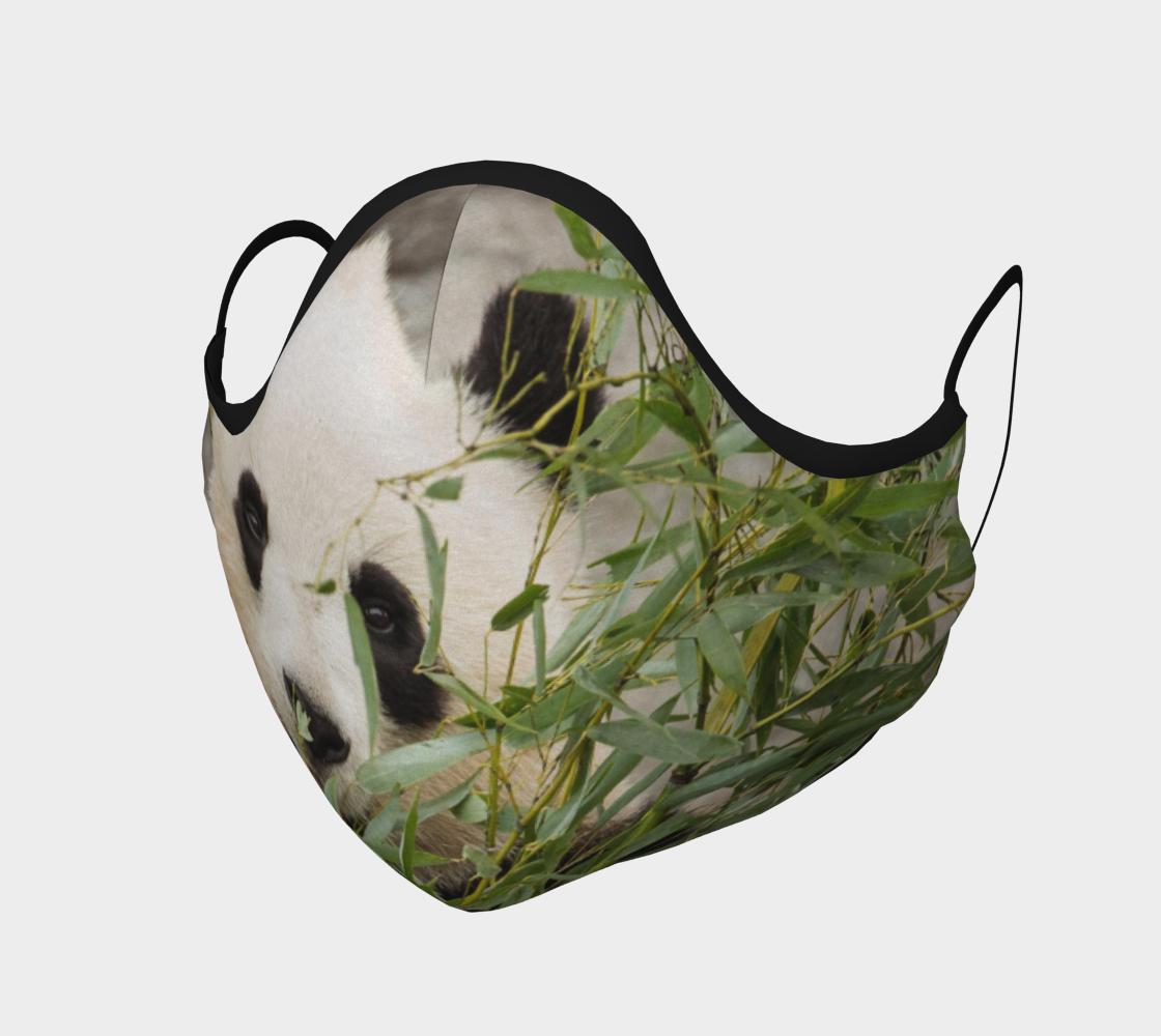 Panda Mask preview