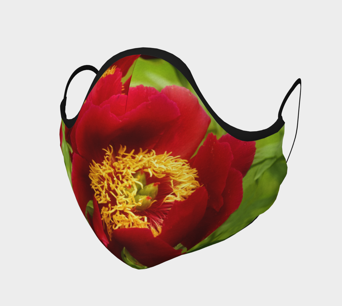 Aperçu de Pivoine rouge  |  Red Peony